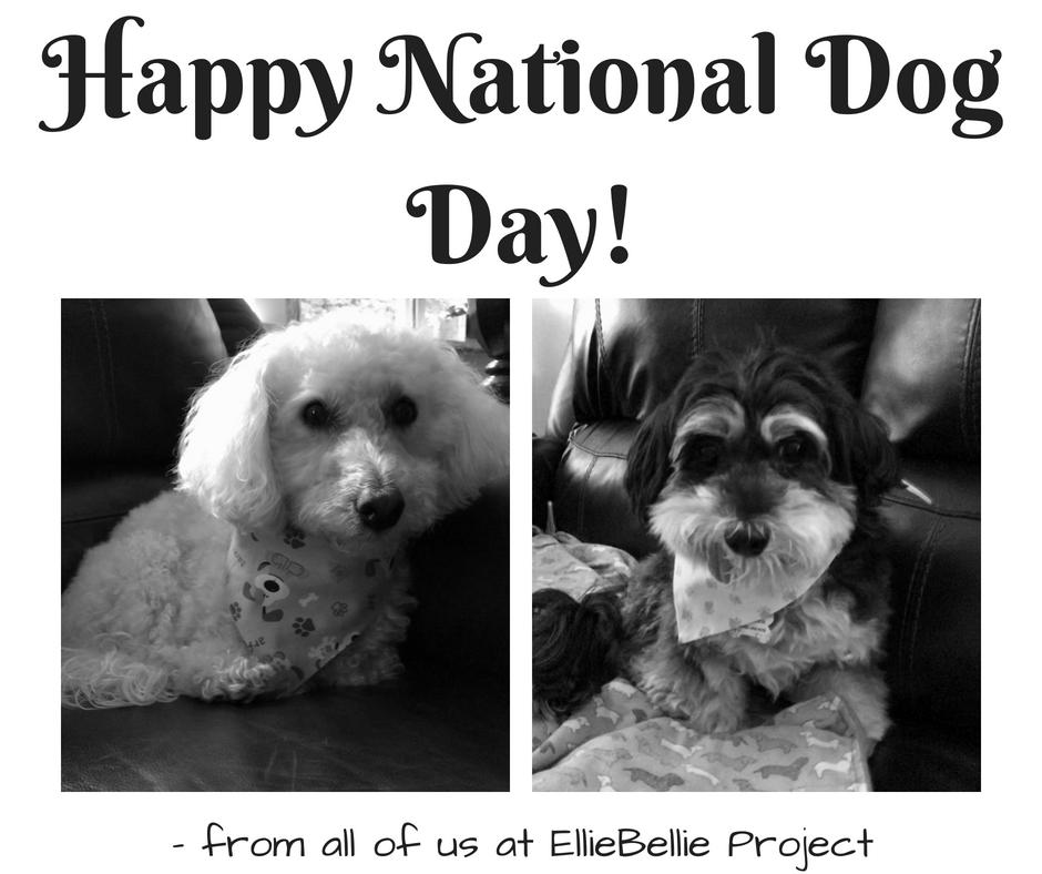 nat dog day (1)